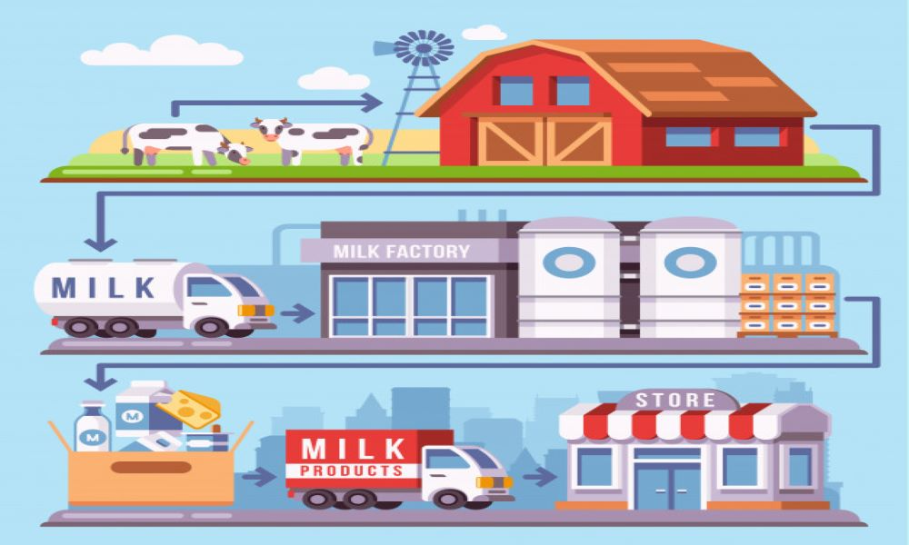 LEVERAGING THE SUPPLY CHAIN TO WIN IN THE INDIAN DAIRY PRODUCTS MARKET